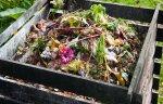 kompost3.jpg