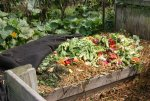 kompost5.jpg