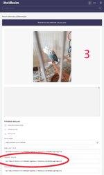 PicsArt_12-19-03.56.28.jpg